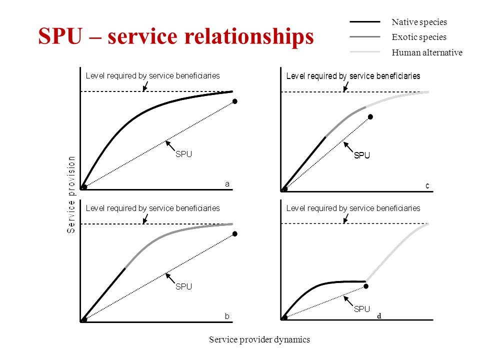 SPU – service relationships