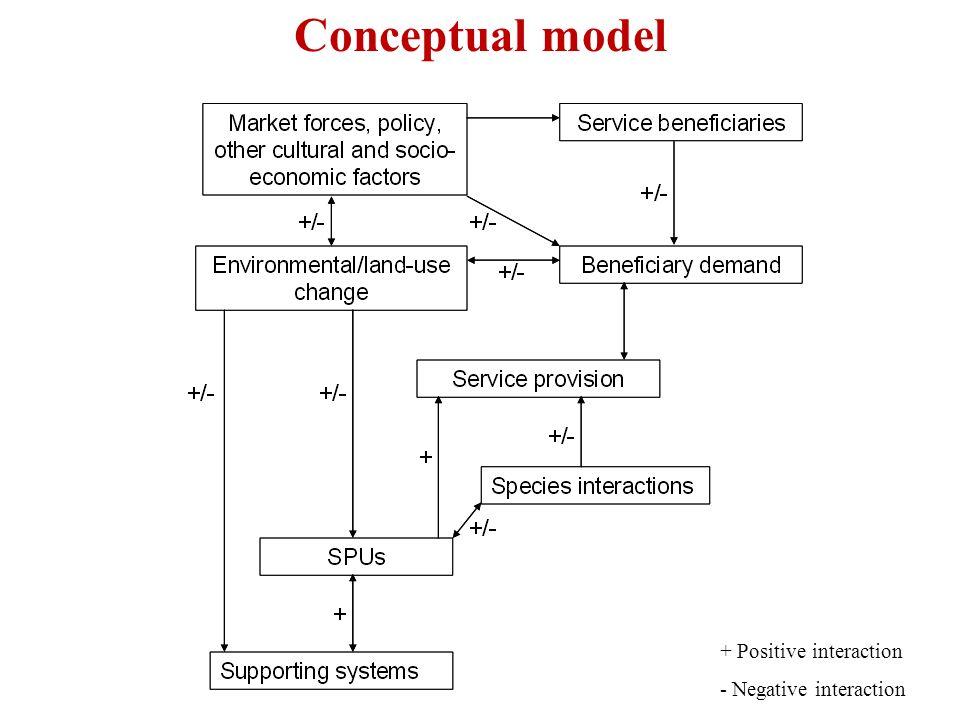Conceptual model + Positive interaction - Negative interaction