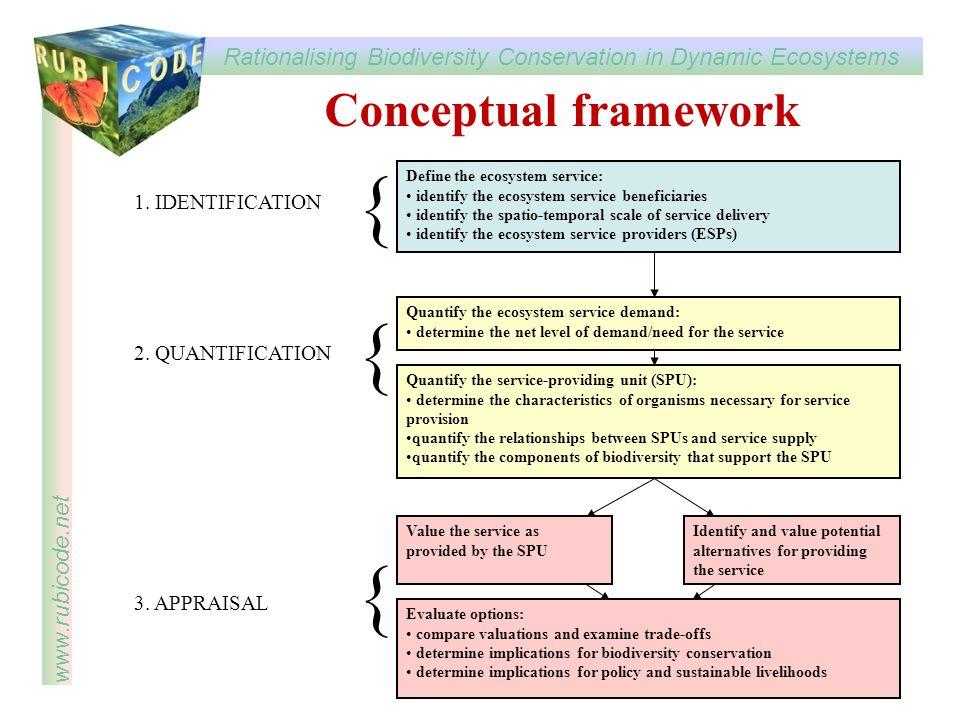 { { Conceptual framework 1. IDENTIFICATION 2. QUANTIFICATION
