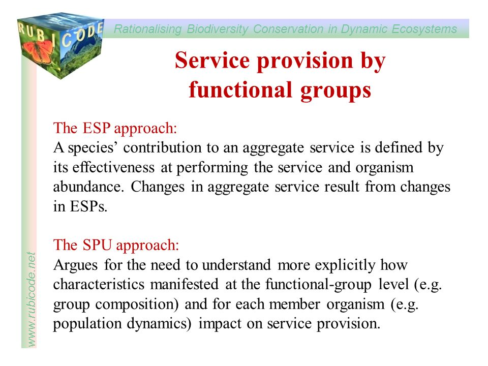 Service provision by functional groups