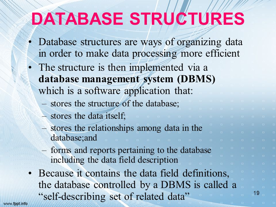 DATABASE STRUCTURES Database structures are ways of organizing data in order to make data processing more efficient.