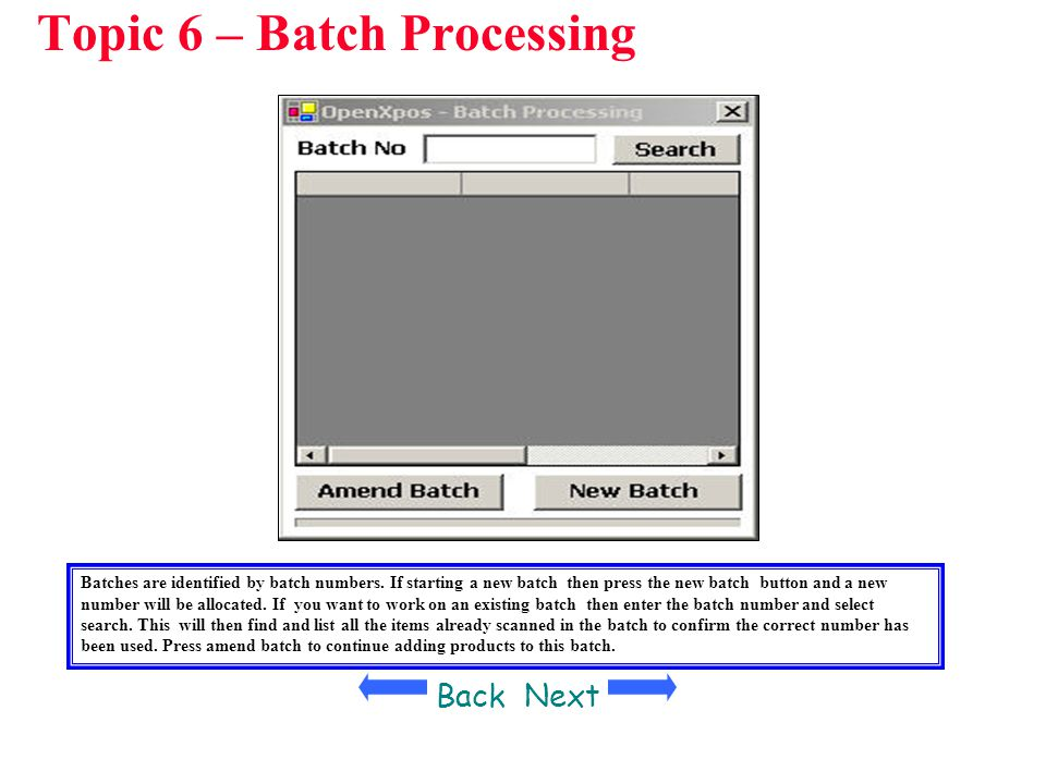 Topic 6 – Batch Processing