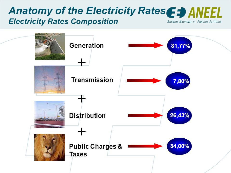 Anatomy of the Electricity Rates