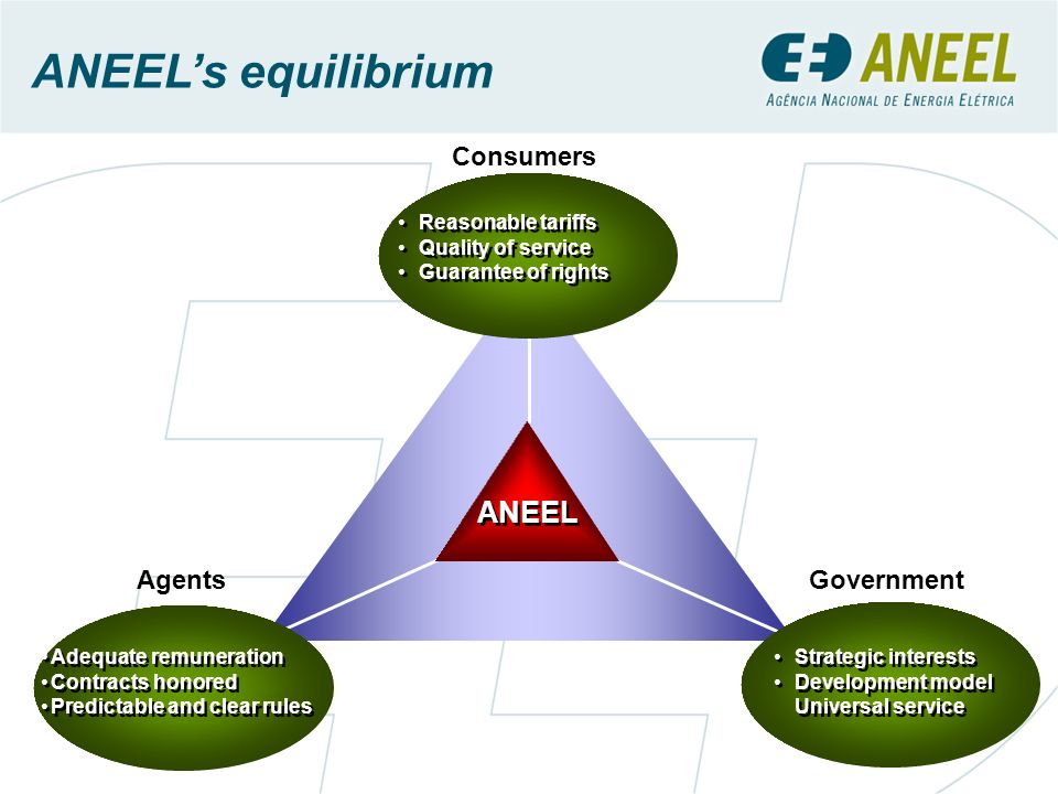 ANEEL's equilibrium ANEEL Consumers Agents Government