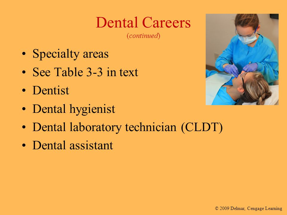 Dental Careers (continued)