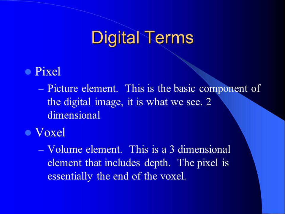 Digital Terms Pixel Voxel