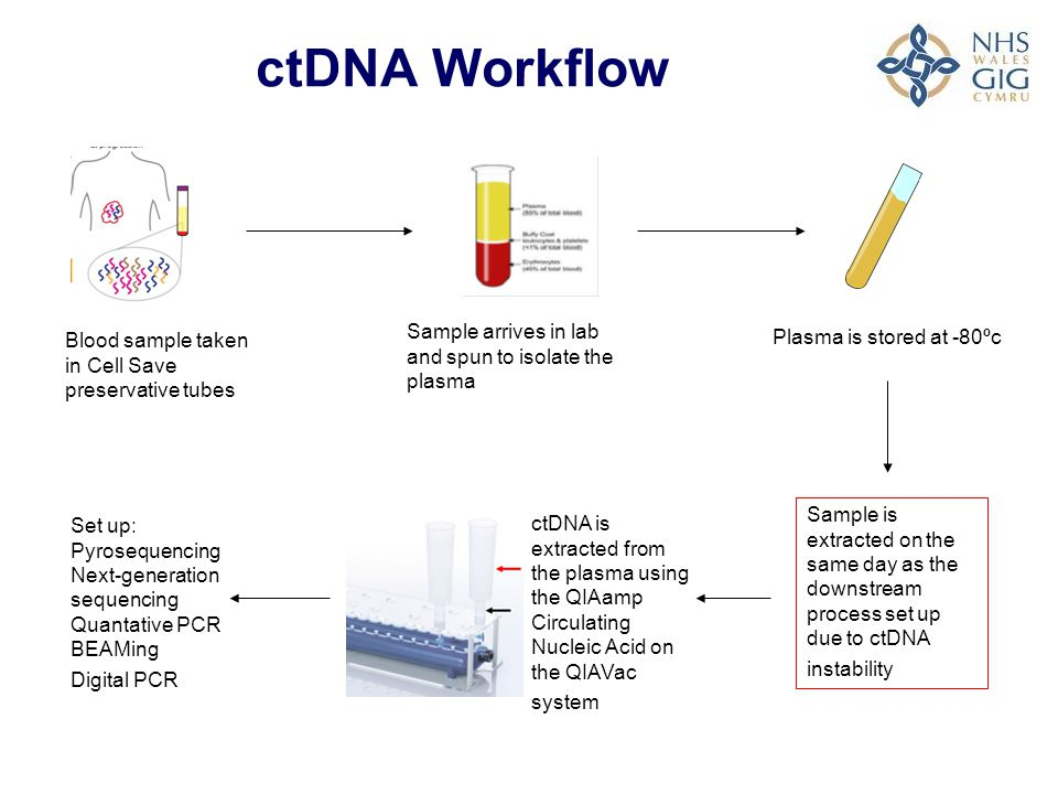 ctDNA Workflow Sample arrives in lab and spun to isolate the plasma