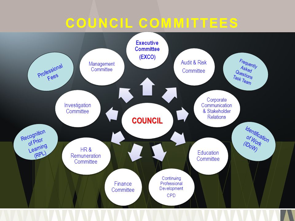 COUNCIL COMMITTEES COUNCIL Executive Committee (EXCO) Audit & Risk