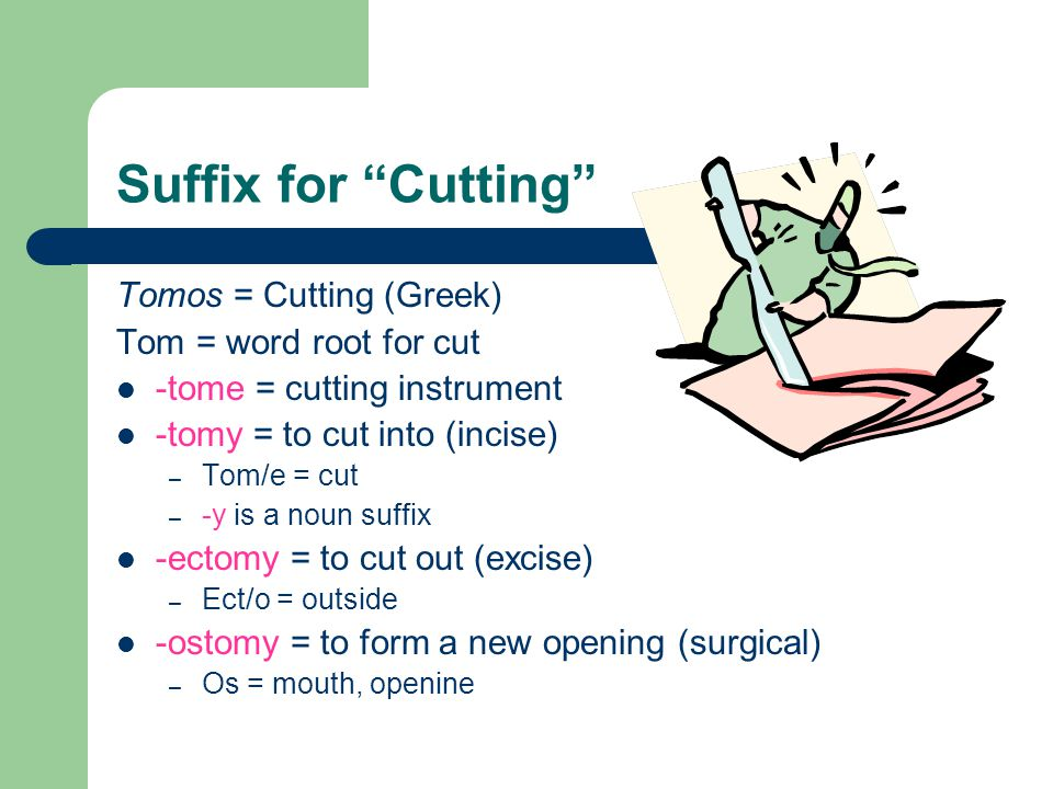 Suffix for Cutting Tomos = Cutting (Greek) Tom = word root for cut