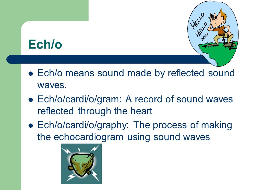 Ech/o Ech/o means sound made by reflected sound waves.