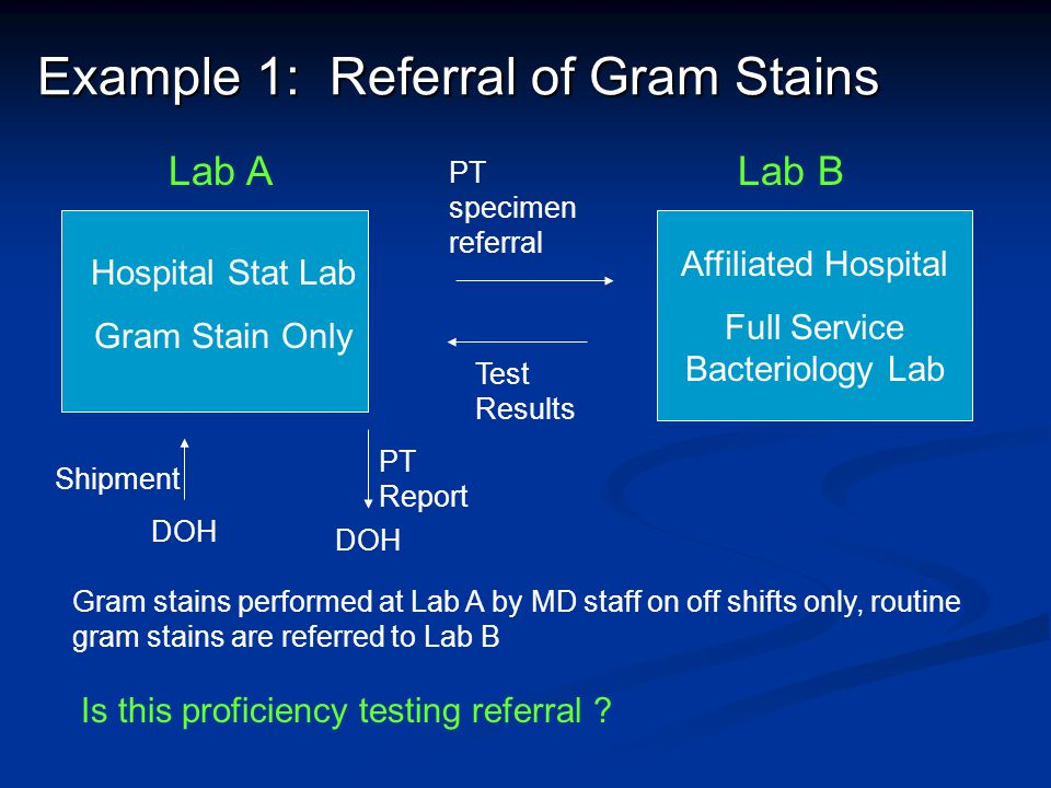Example 1: Referral of Gram Stains