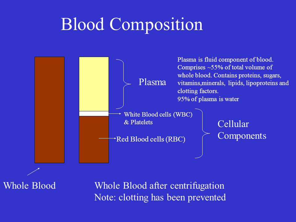 Blood Composition Plasma Cellular Components Whole Blood