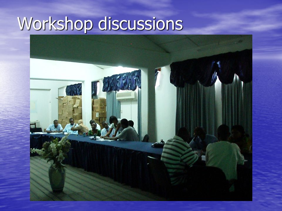 Workshop discussions