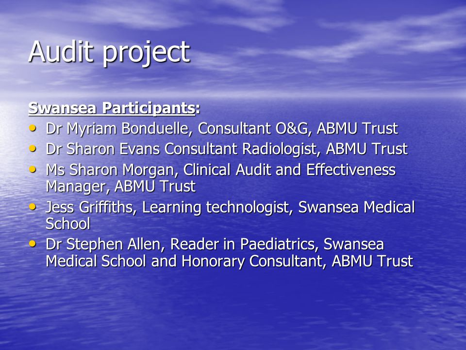 Audit project Swansea Participants: