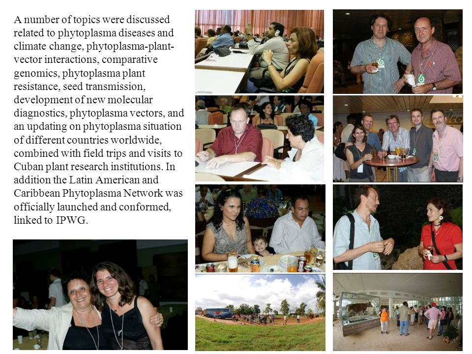 A number of topics were discussed related to phytoplasma diseases and climate change, phytoplasma-plant-vector interactions, comparative genomics, phytoplasma plant resistance, seed transmission, development of new molecular diagnostics, phytoplasma vectors, and an updating on phytoplasma situation of different countries worldwide, combined with field trips and visits to Cuban plant research institutions.