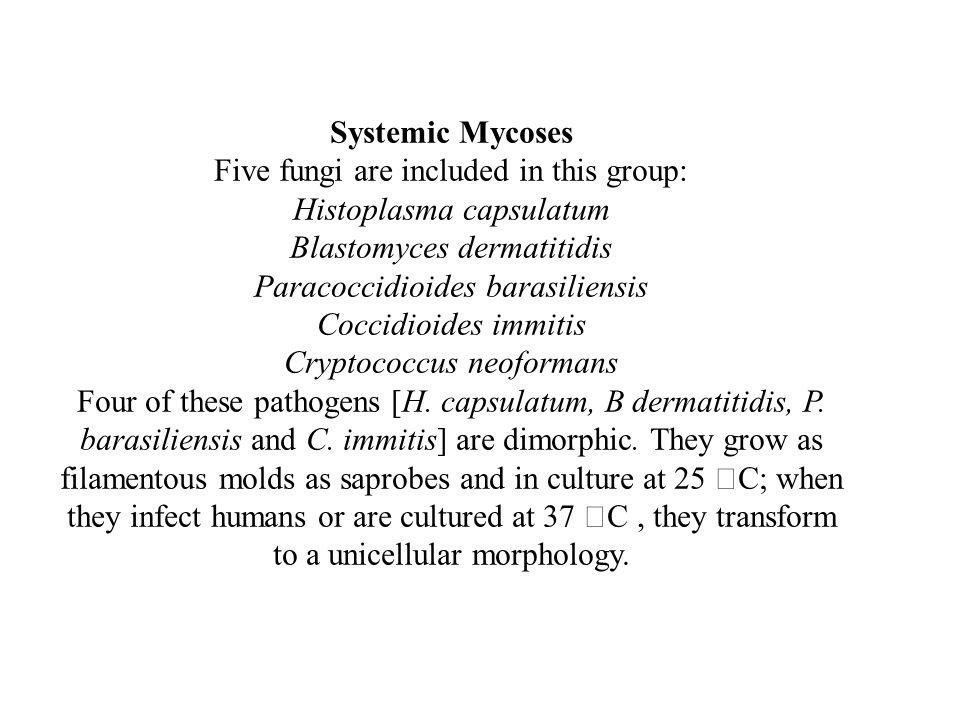 Five fungi are included in this group: Histoplasma capsulatum