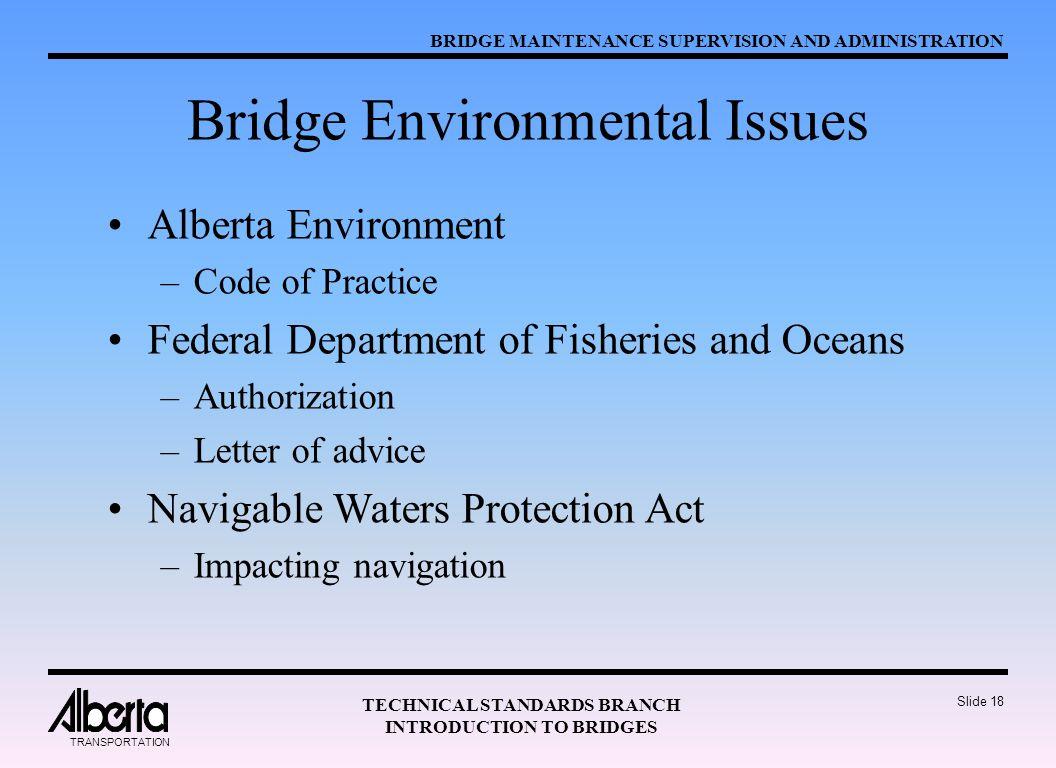 Bridge Environmental Issues