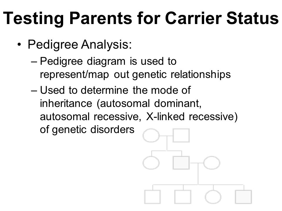 Testing Parents for Carrier Status