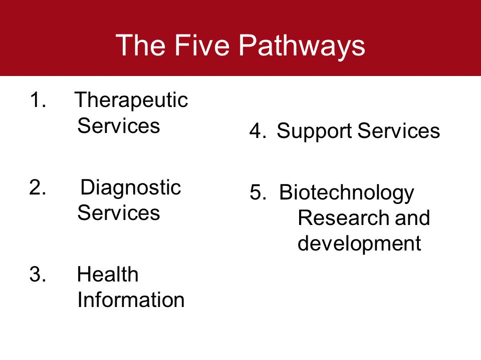 The Five Pathways Therapeutic Services Support Services