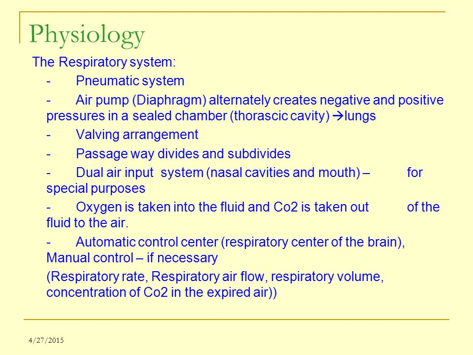 Physiology The Respiratory system: - Pneumatic system