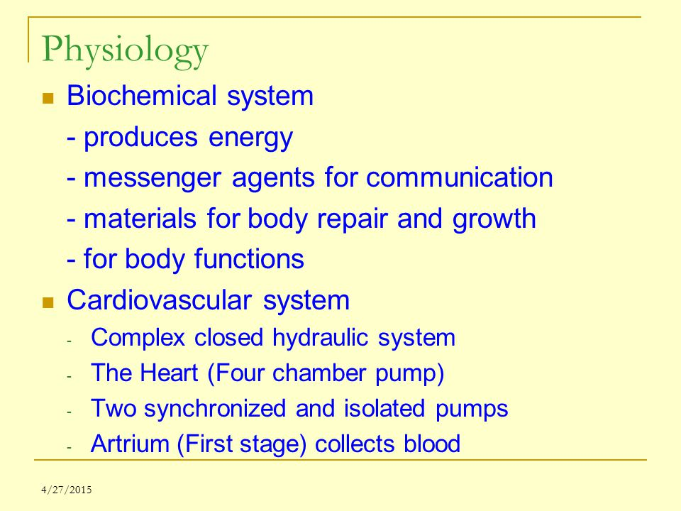 Physiology Biochemical system - produces energy