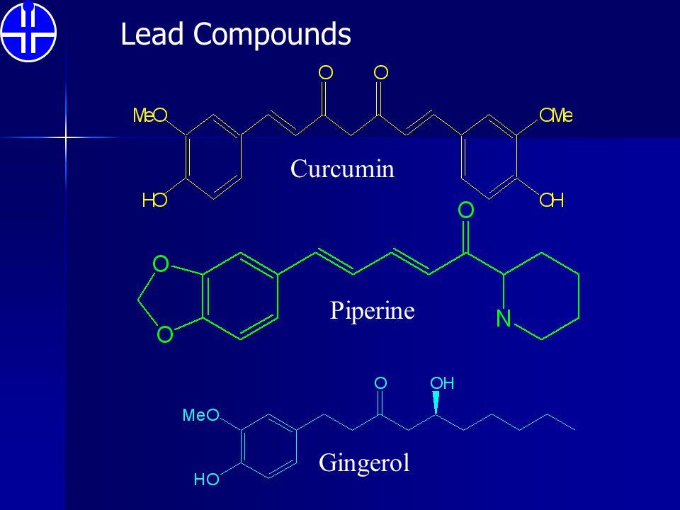 Lead Compounds Curcumin Piperine Gingerol