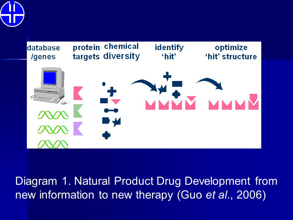 Diagram 1. Natural Product Drug Development from new information to new therapy (Guo et al., 2006)