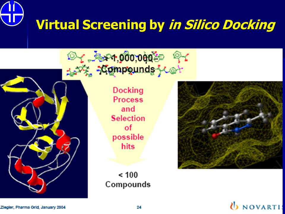 Virtual Screening by in Silico Docking