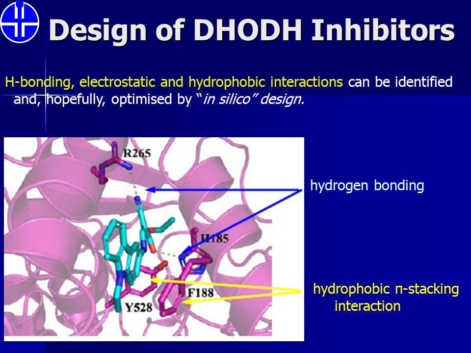 Design of DHODH Inhibitors