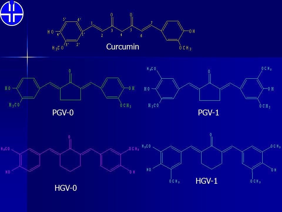 Curcumin PGV-0 PGV-1 HGV-1 HGV-0