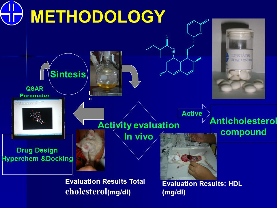 METHODOLOGY Sintesis Anticholesterol Activity evaluation In vivo