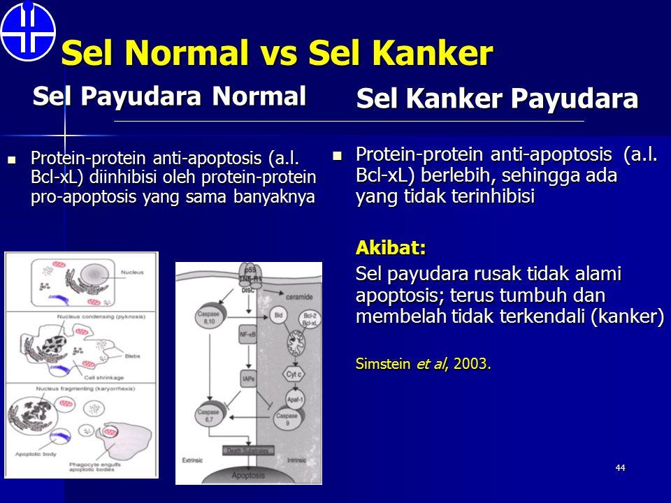 Sel Normal vs Sel Kanker