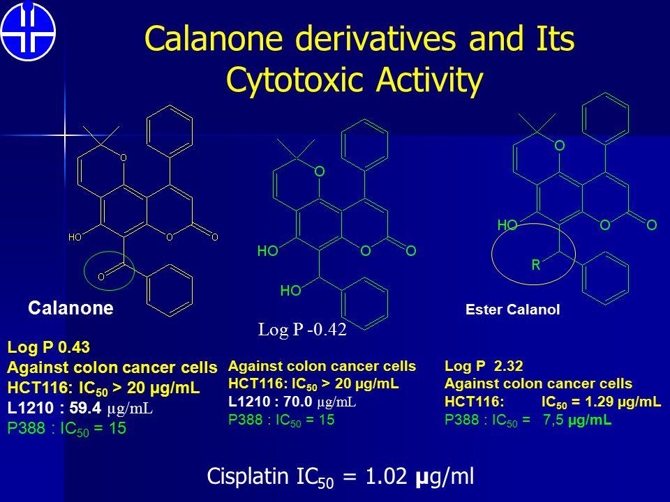 Calanone derivatives and Its Cytotoxic Activity