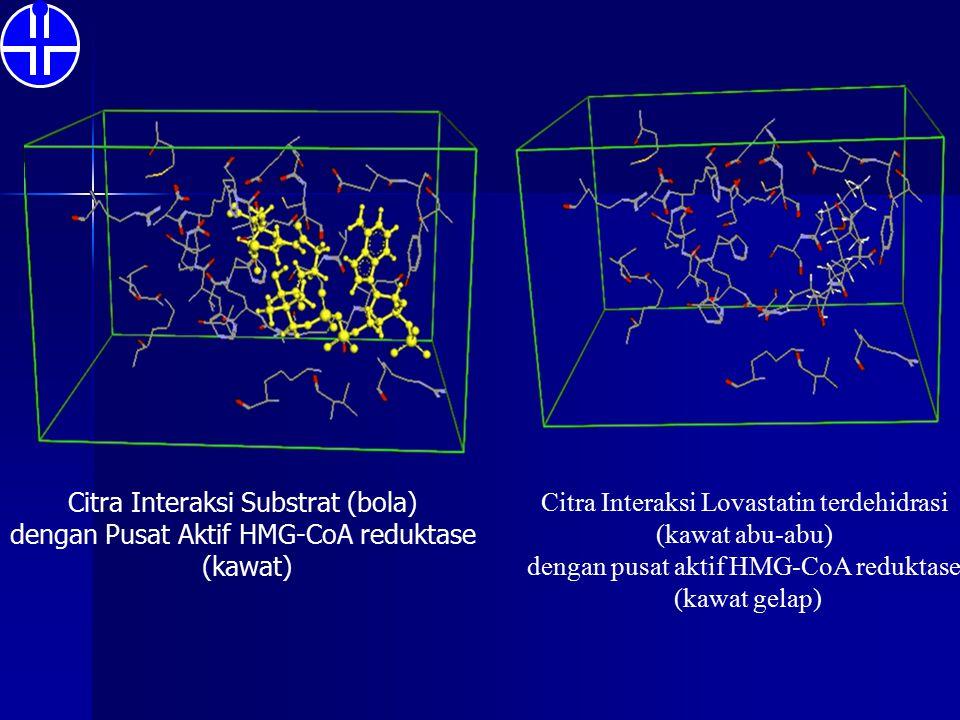 Citra Interaksi Substrat (bola) dengan Pusat Aktif HMG-CoA reduktase