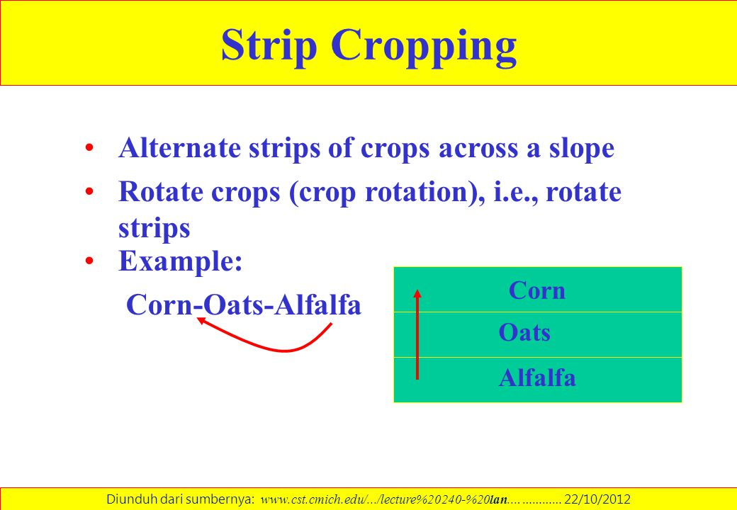Strip Cropping Alternate strips of crops across a slope
