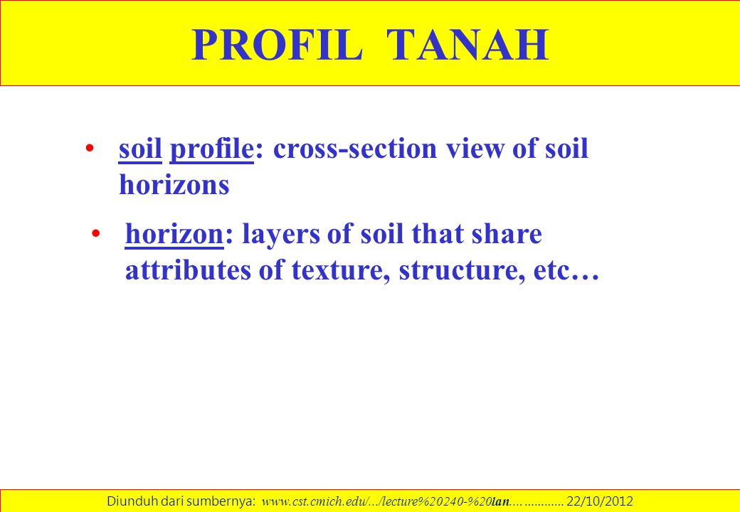 PROFIL TANAH soil profile: cross-section view of soil horizons