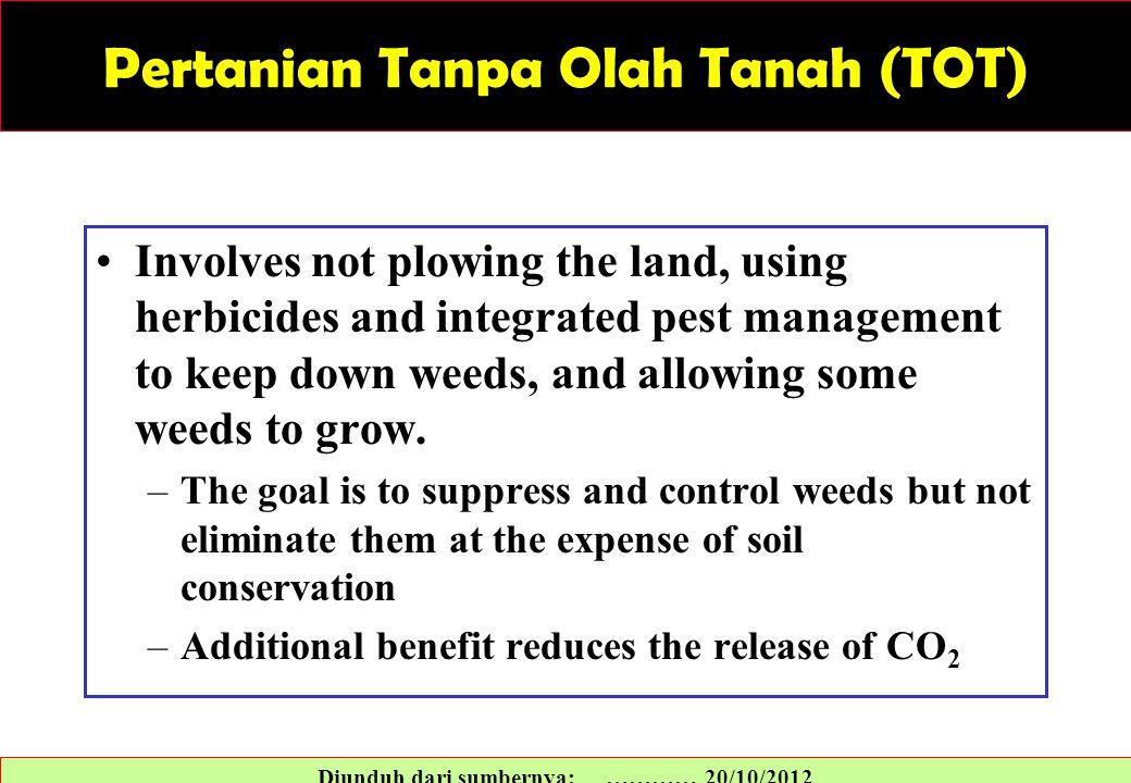 Pertanian Tanpa Olah Tanah (TOT)