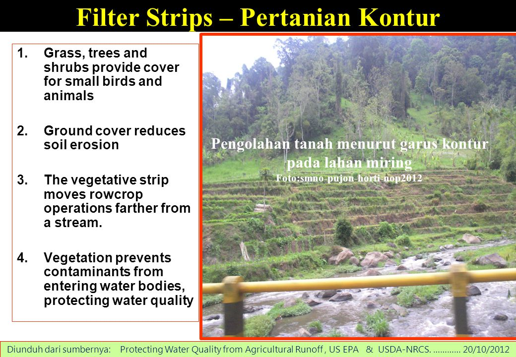 Filter Strips – Pertanian Kontur