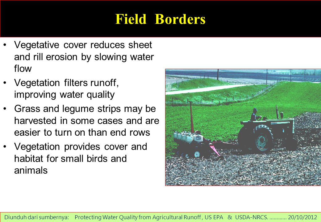 Field Borders Vegetative cover reduces sheet and rill erosion by slowing water flow. Vegetation filters runoff, improving water quality.
