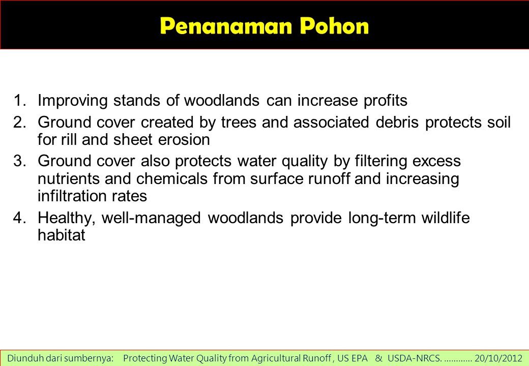 Penanaman Pohon Improving stands of woodlands can increase profits