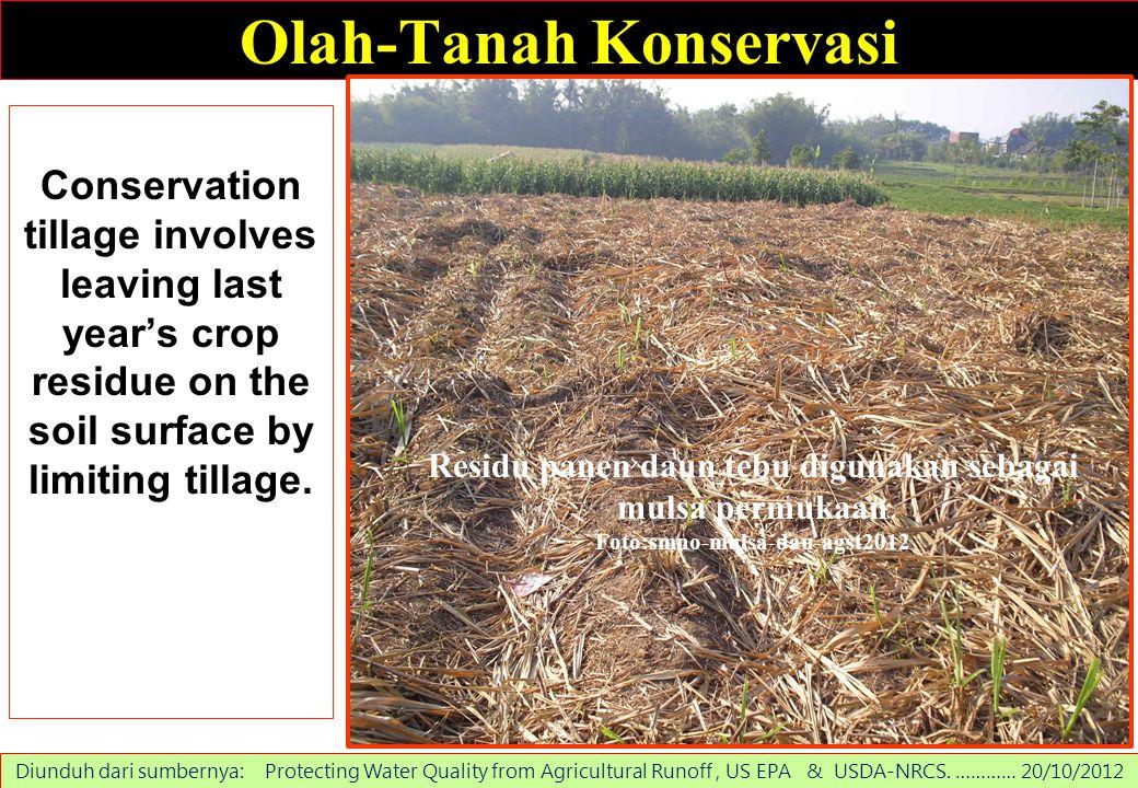 Olah-Tanah Konservasi