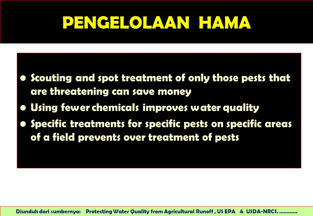 PENGELOLAAN HAMA Scouting and spot treatment of only those pests that are threatening can save money.