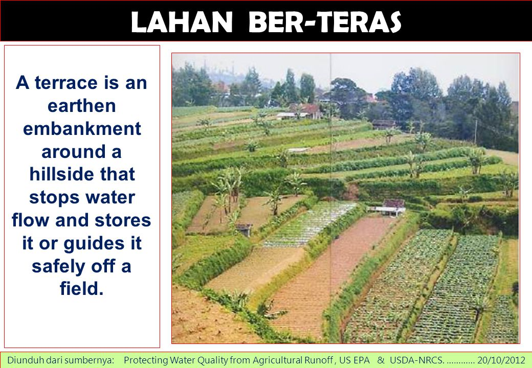 LAHAN BER-TERAS A terrace is an earthen embankment around a hillside that stops water flow and stores it or guides it safely off a field.