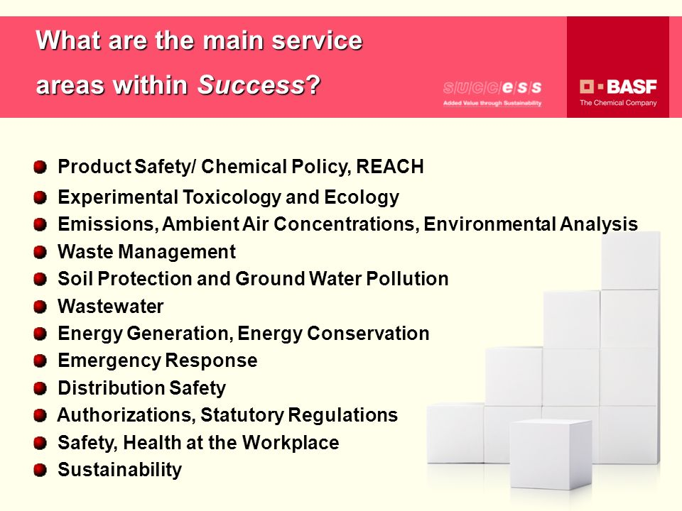 What are the main service areas within Success