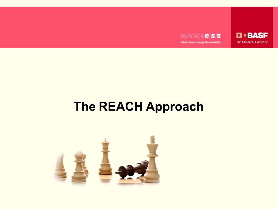 0,2 The REACH Approach