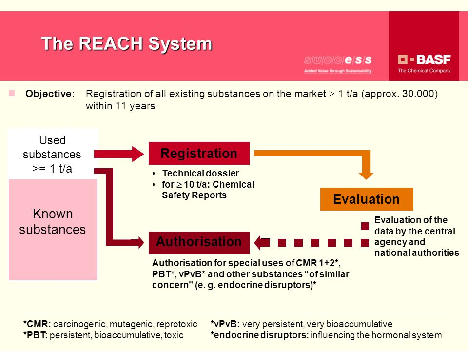 The REACH System Registration Known substances Evaluation