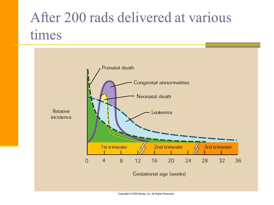 After 200 rads delivered at various times