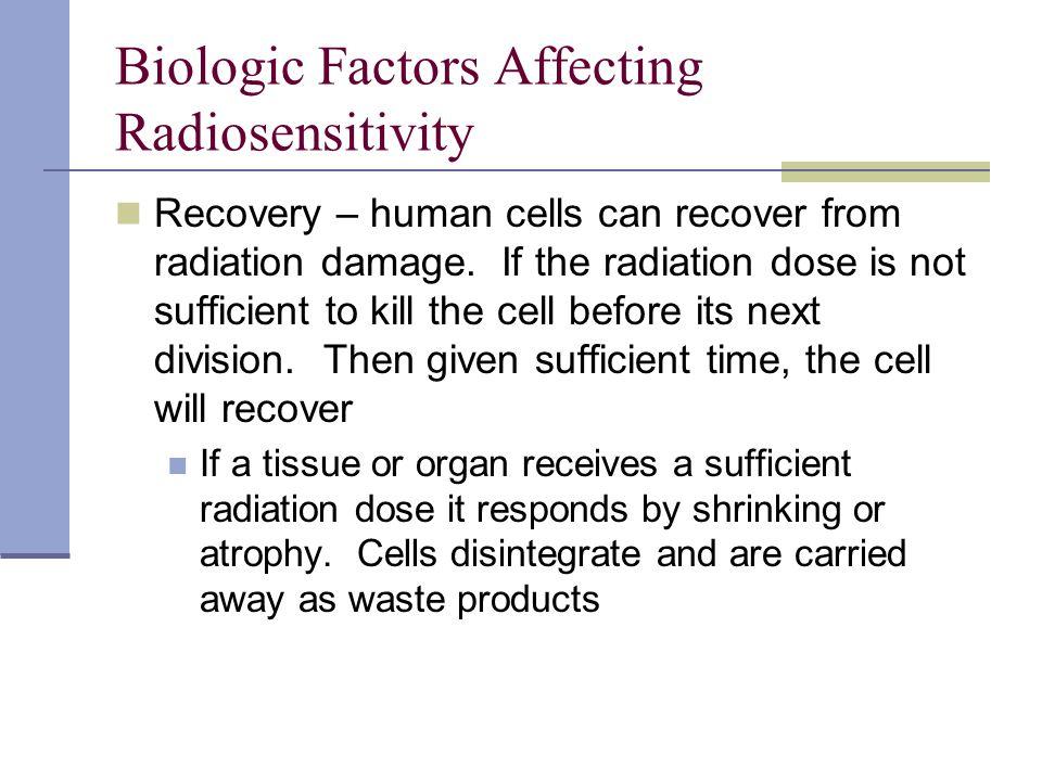 Biologic Factors Affecting Radiosensitivity