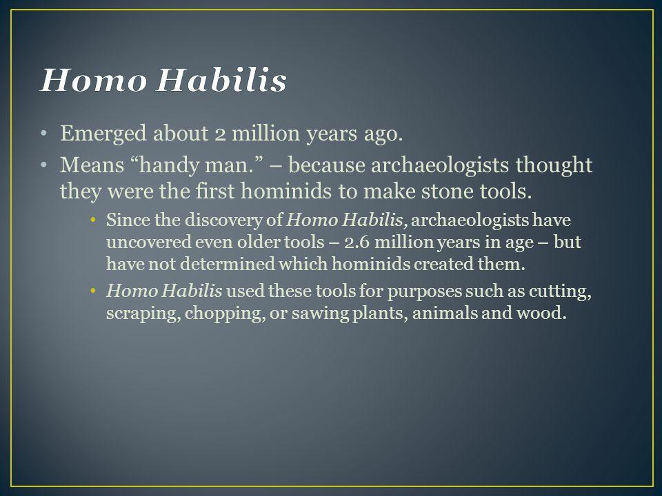 Homo Habilis Emerged about 2 million years ago.