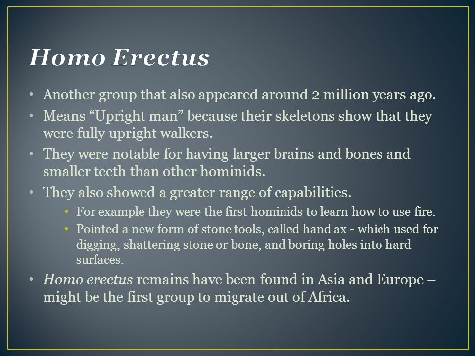 Homo Erectus Another group that also appeared around 2 million years ago.